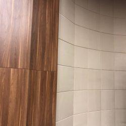 konferans-salonu-akustik-duvar-ve-tavan-kaplama-meclis-salonu