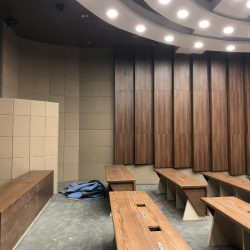 konferans-salonu-akustik-duvar-ve-tavan-kaplama-meclis-salonu3