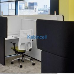 ofislerde-kisisel-alanlar-akustik-ofisler19